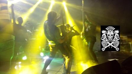 ORKESTA P. soneja rock